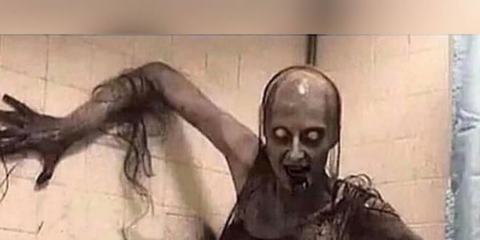 What Is The First Thing You Will Do If You See This In Your Bathroom At 3AM? 19