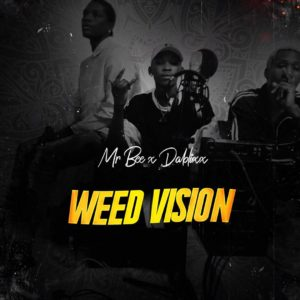 Mr Bee x Dablixx - Weed Vision