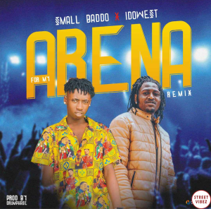 Small BADDO Ft. Idowest – For My Arena (Remix) 1