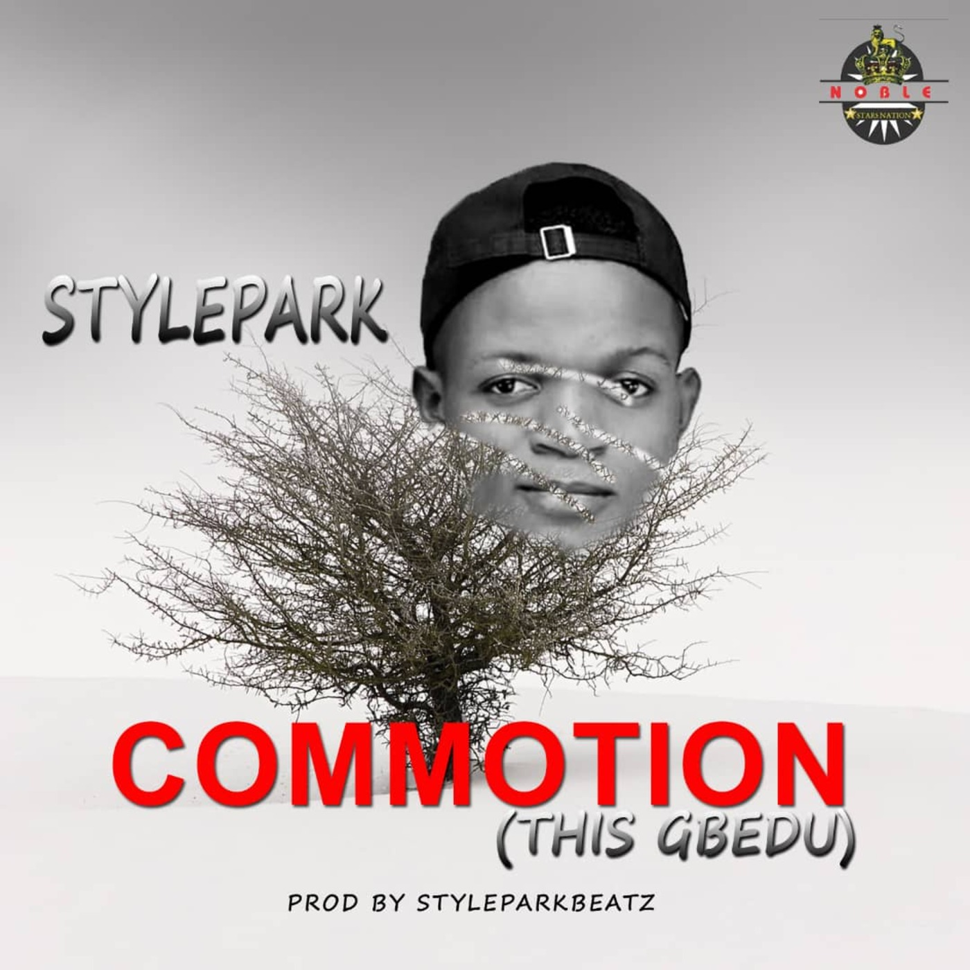 Stylepark – Commotion (This Gbedu) min