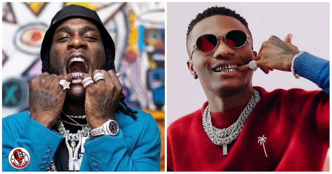 'African Artistes Must Learn To Use Their Brains' – Tracy Zille Says As She Drags Wizkid And Burna Boy